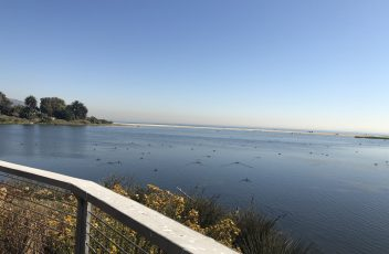 picture-2-lagoon